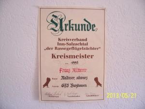 Kreismeister 1995 Inn/Sazachtal